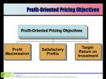 profit oriented pricing objectives