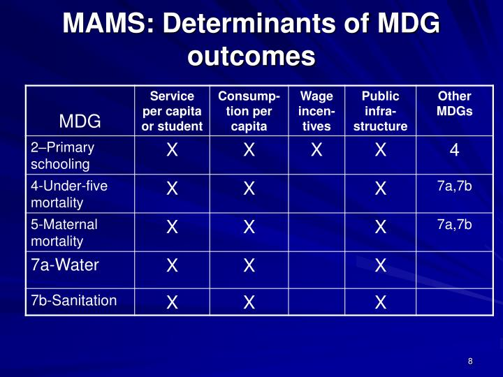 MAMS: Determinants of MDG outcomes