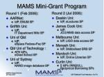 mams mini grant program