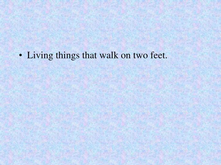 Living things that walk on two feet.