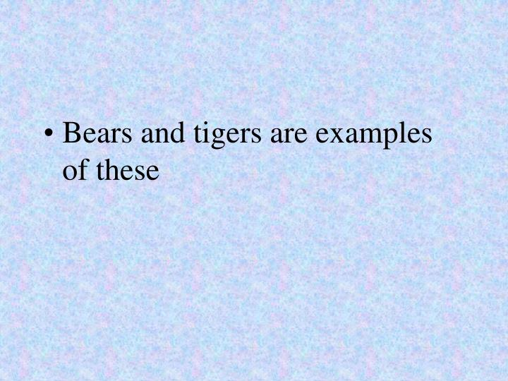 Bears and tigers are examples of these