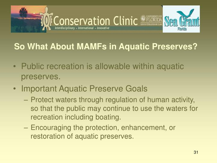 So What About MAMFs in Aquatic Preserves?