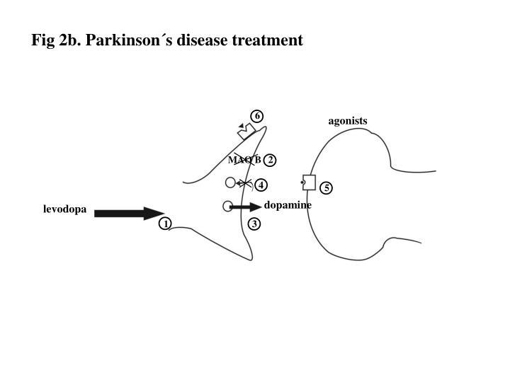 Fig 2b. Parkinson´s disease treatment