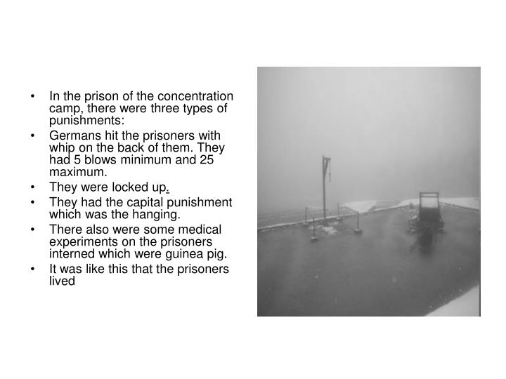 In the prison of the concentration camp, there were three types of punishments: