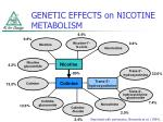 genetic effects on nicotine metabolism