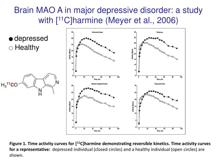 Brain MAO A in major depressive disorder: a study with [