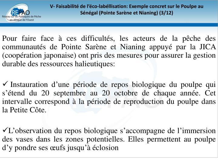 V- Faisabilité de l'éco-