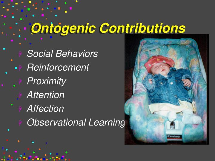 Ontogenic Contributions