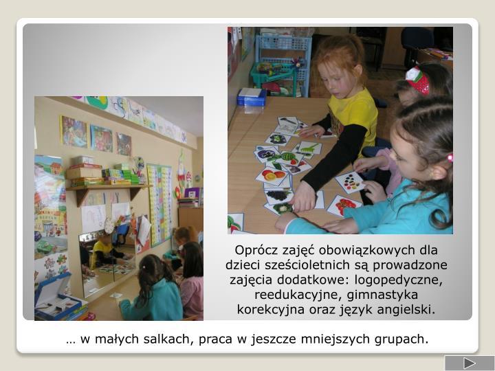 Oprócz zajęć obowiązkowych dla dzieci sześcioletnich są prowadzone zajęcia dodatkowe: logopedyczne, reedukacyjne, gimnastyka korekcyjna oraz język angielski.