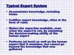 typical expert system