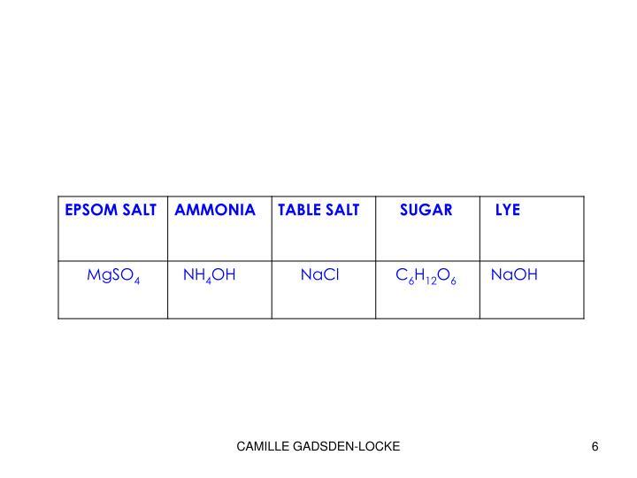 CAMILLE GADSDEN-LOCKE