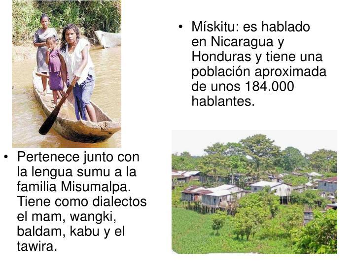 Pertenece junto con la lengua sumu a la familia Misumalpa. Tiene como dialectos el mam, wangki, baldam, kabu y el tawira.