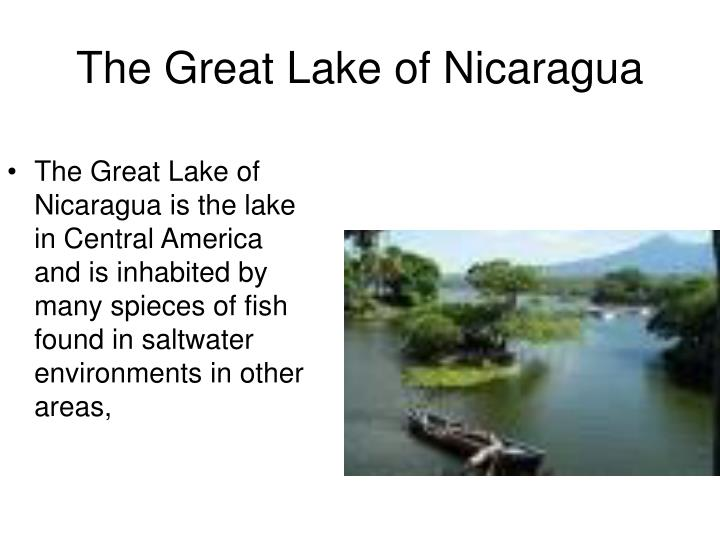 The Great Lake of Nicaragua is the lake in Central America and is inhabited by many spieces of fish found in saltwater environments in other areas,