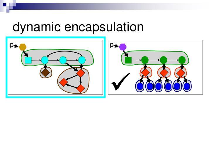dynamic encapsulation