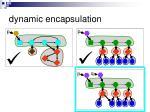 dynamic encapsulation3