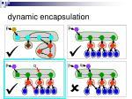 dynamic encapsulation4