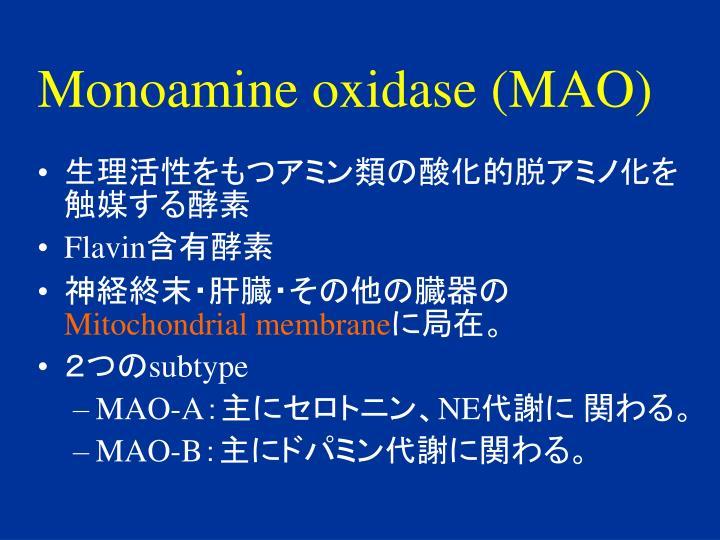Monoamine oxidase (MAO)