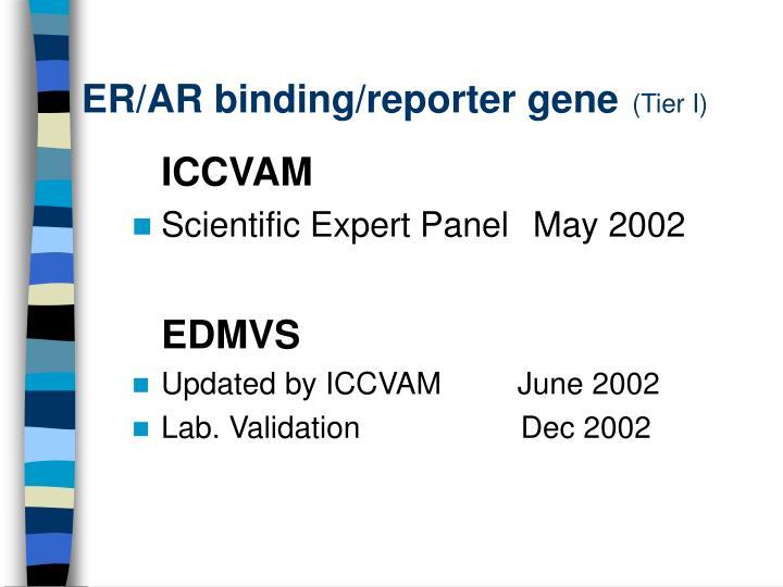 ER/AR binding/reporter gene