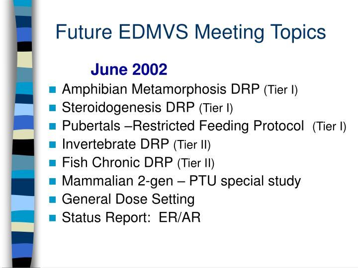 Future EDMVS Meeting Topics