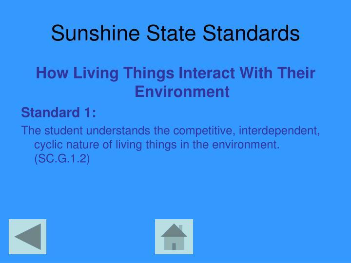 Sunshine State Standards