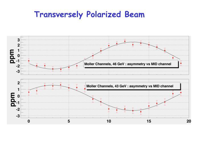 Transversely Polarized Beam