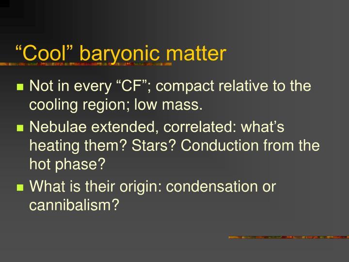 """Cool"" baryonic matter"