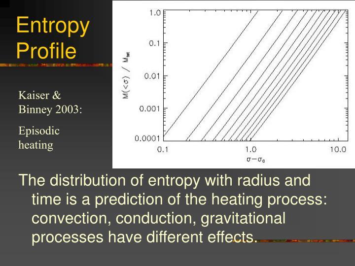 Entropy Profile