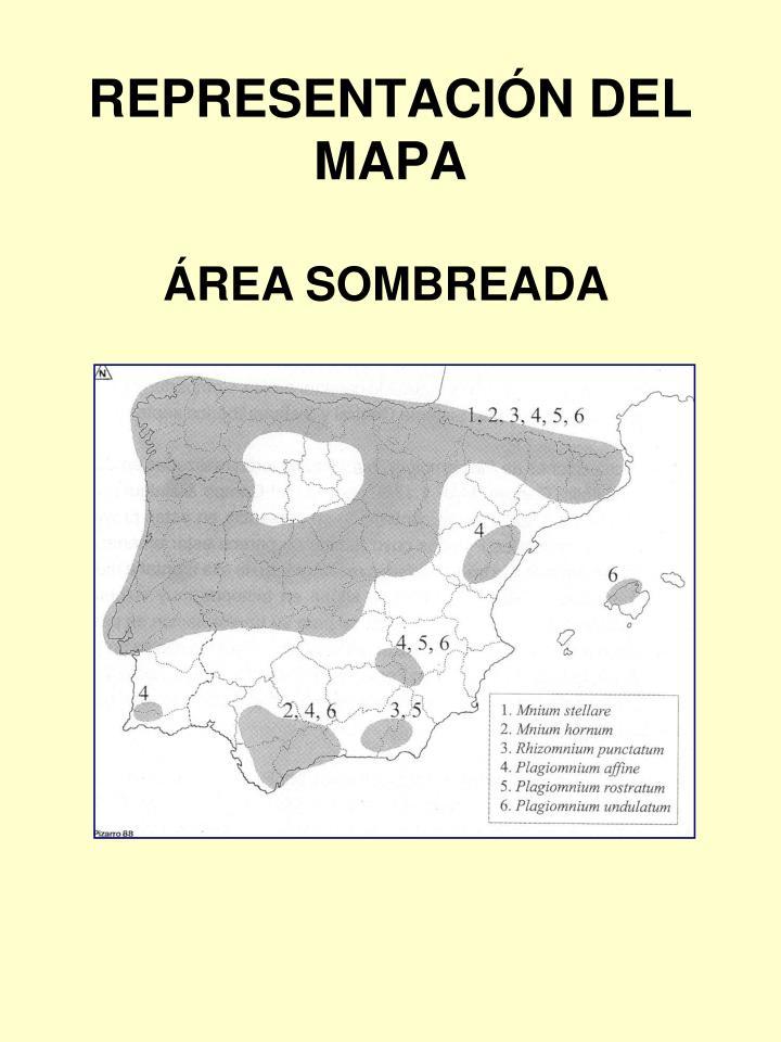 REPRESENTACIÓN DEL MAPA