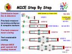 mice step by step