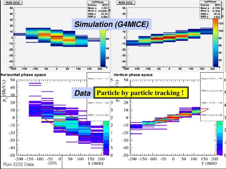 Simulation (G4MICE)
