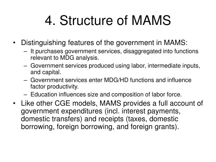 4. Structure of MAMS