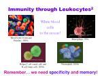 immunity through leukocytes 2