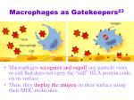 macrophages as gatekeepers 23