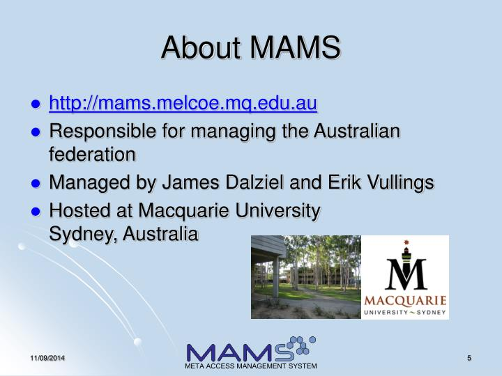 About MAMS