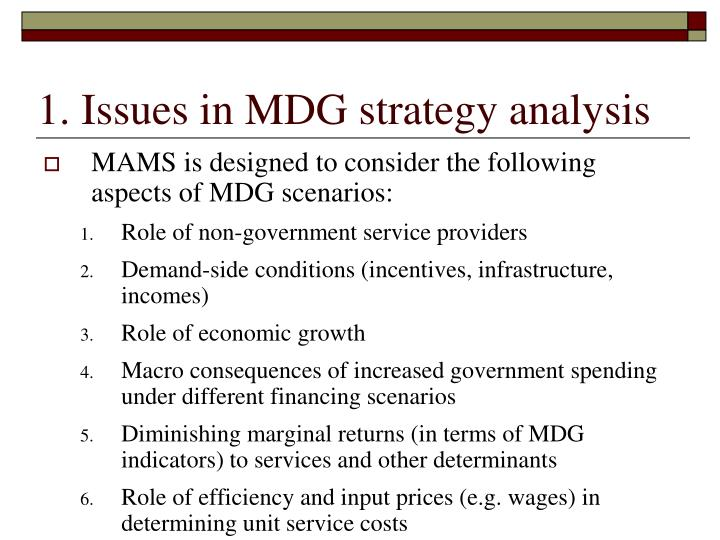 1. Issues in MDG strategy analysis