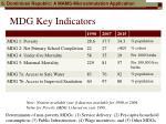 mdg key indicators
