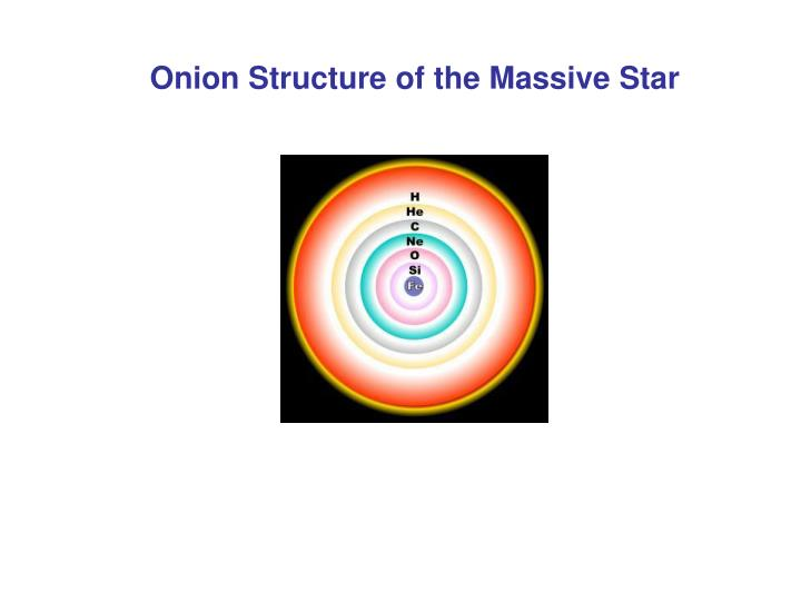 Onion Structure of the Massive Star
