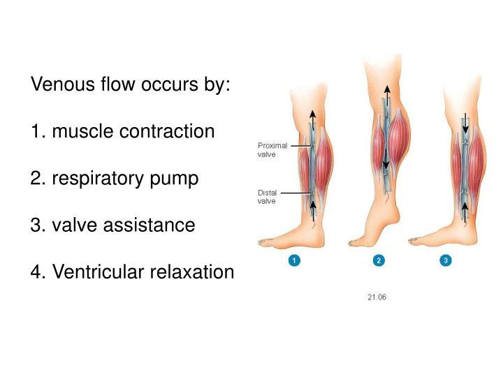 Venous flow occurs by:
