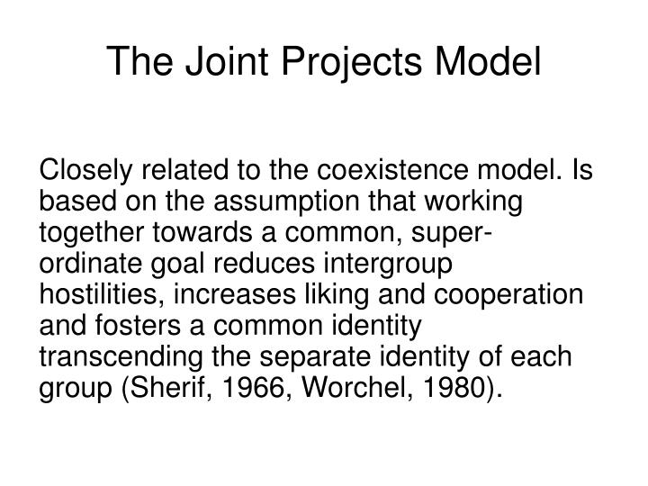 The Joint Projects Model