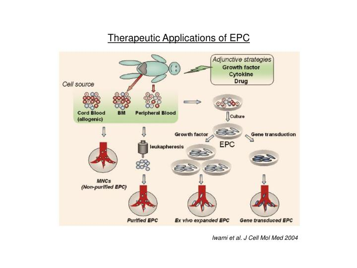Therapeutic Applications of EPC