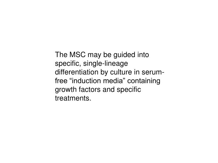 """The MSC may be guided into specific, single-lineage differentiation by culture in serum-free """"induction media"""" containing growth factors and specific treatments."""