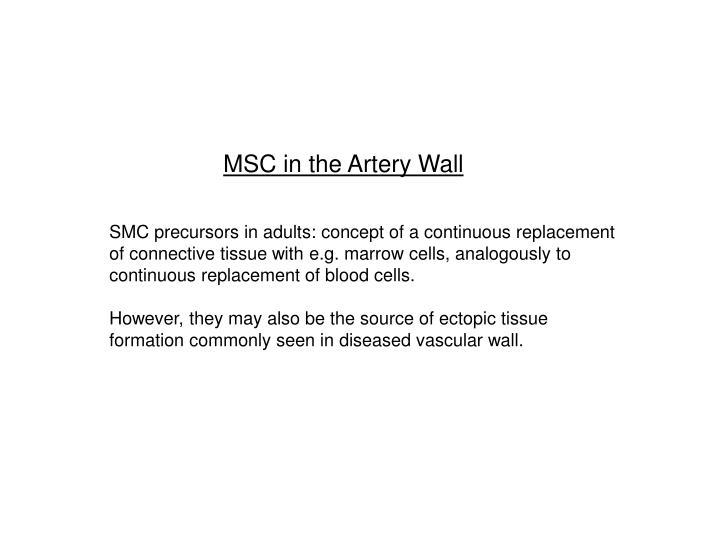 MSC in the Artery Wall