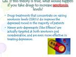 qu if this theory is true what would happen if you take drugs to increase serotonin levels