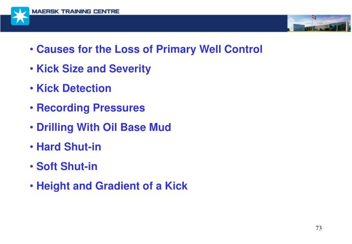 Causes for the Loss of Primary Well Control