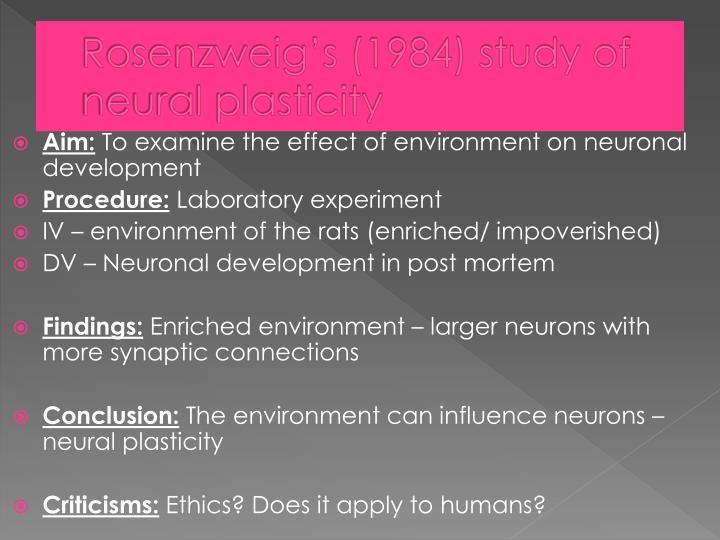 Rosenzweig's (1984) study of neural plasticity