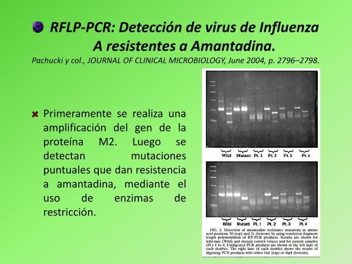 RFLP-PCR: Detección de virus de Influenza A resistentes a