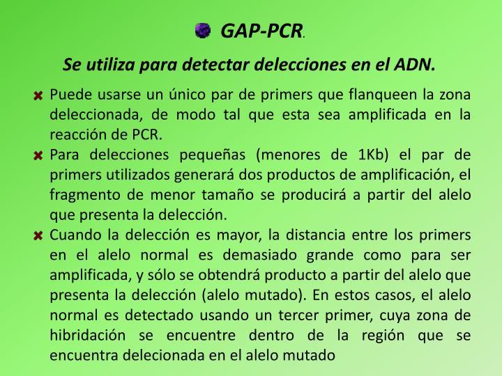 GAP-PCR