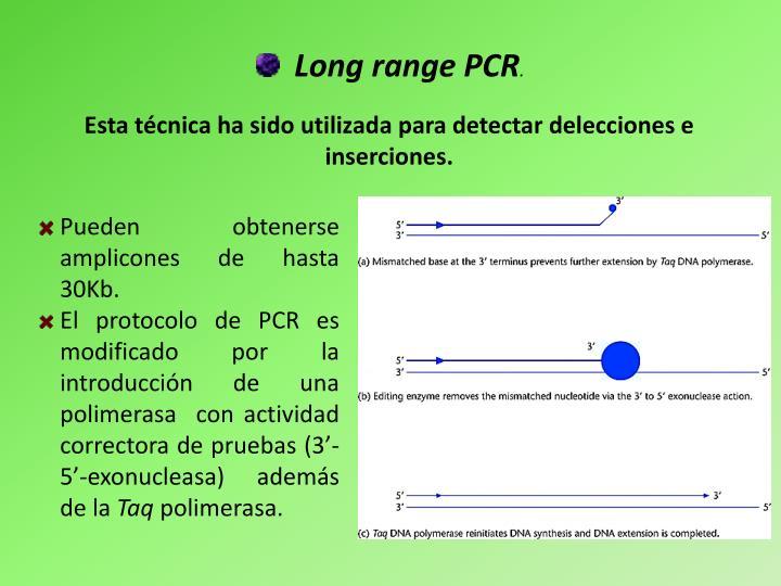 Long range PCR