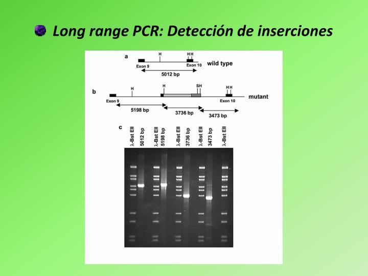 Long range PCR: Detección de inserciones