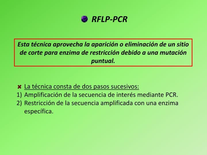 RFLP-PCR